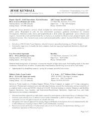 Writing A Government Resume Government Resume Writing Writing Best