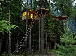 tree houses. Interesting Tree 151009_EYE_CabinPornExcerpt1 For Tree Houses