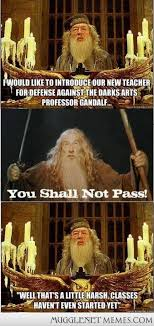 i love the harry potter fandom - MuggleNet Memes via Relatably.com