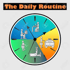 Daily Routine Chart Vector Flat Illustration Life Schedule Of Daily Routine With