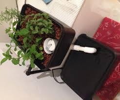 Hydroponics Herb Garden Kitchen Mini Hydroponics Herb Garden 8 Steps With Pictures