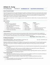 Seniorial Analyst Resume Cv Template Objective Sr Sample