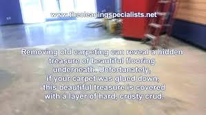 glue down carpet removal machine floor on concrete remove