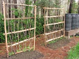 Small Picture 22 best garden trellis and fence ideas images on Pinterest