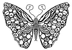 Small Picture Butterfly Coloring Pages Download Free Butterflies to Color