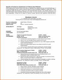 Resume Guidelines Federal Resume Guidelines New Government Format Best Template 28