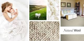 abbott paint carpet masland wool carpet st paul stillwater white