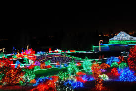 Zoo Lights Seattle Seattle Local Flavor Christmas Lights