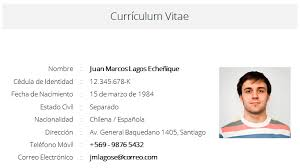 Modelo De Curriculum Vitae En Word Modelo De Curriculum Vitae Para Completar En Word Sample Resume
