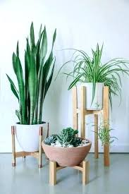 plant stands outdoor wood wood plant stand the unique look of plant stands indoor with simple