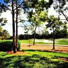 Strand Golf Club - Naples Golf Homes | Naples Golf Guy