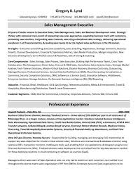 Top Rated Resume Writing Services 2015 Job Resume Samples Top Rated