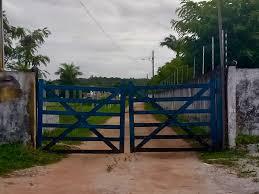 Resultado de imagem para Bandidos invadem granja em Macaíba