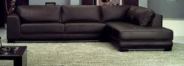 we specialize in carpet rug and upholstery cleaning