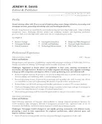 Ceo Resume Examples Cool Winning Resume Template Ceo Resume Templates Award Winning Ceo