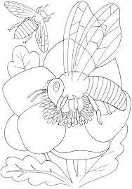 Small Picture Coloring Pages With Insects anfukco