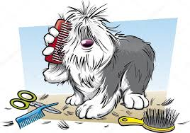 Image result for dog grooming free clipart
