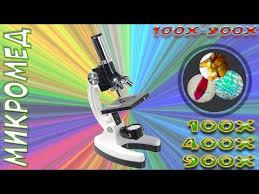 <b>Микроскоп Микромед 100x-900x в</b> кейсе