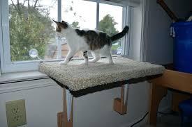 outdoor cat perch cat diy outdoor cat perch outdoor cat perch