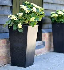 outdoor plant pots tall melbourne