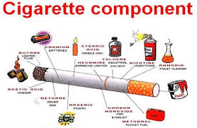 nicotine expository essay samples and examples nicotine as the most dangerous drug