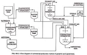Bioprocess Flow Chart Glutamic Acid History Production And Uses With Diagram