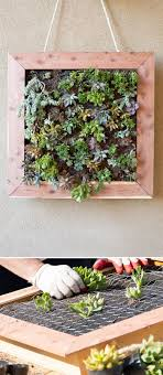 Turn plants into art you can hang from your wall with this DIY vertical  succulent garden