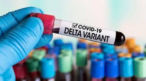 Covid, in Campania il maggior numero di sequenze di variante Delta
