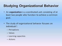 What Is Organizational Behavior What Is Organizational Behavior Ppt Download