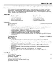 Seo Resume Examples Best SEO Resume Example LiveCareer 10
