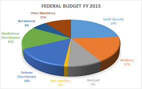 2015 Us Budget Pie Chart Us Budget Expenses Margarethaydon Com