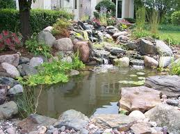 Backyard Ponds Best Backyard Ponds Home Design Lover