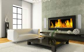 Dsp520 Fireplace Room View On The Modern Interior With