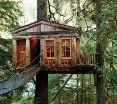 Tree House Photos Download Tree Houses For Rent In Washington Solidaria Garden