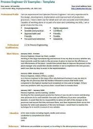 Key Skills Resume Extraordinary 2828 Example Of Key Skills In Resume Scbots