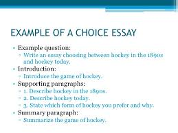 types of essays <br > 5