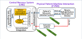 Patient Robot Interaction Information Flow For Nrm