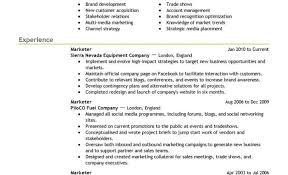 Resume Home Design Ideas 89 Extraordinary Word Resume Template