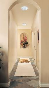 lighting for hallways and landings. A Friendly Face Enjoying Daylight In Hallway Example Lighting For Hallways And Landings