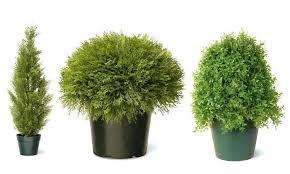 fake shrubs artificial bushes for outdoors outdoor shrubs fake outdoor shrubs artificial bushes outdoor rated artificial fake shrubs
