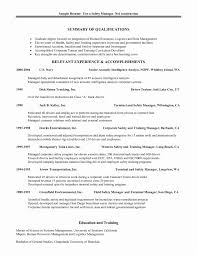 Mis Officer Sample Resume Excellent Mis Manager Resume Sample With Additional Mis Executive 17