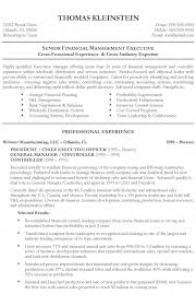 Executive Resumes Examples Stunning Sample R Sum Chief Financial Officer Before Executive Resume