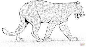 Jaguar Loopt Kleurplaat Gratis Kleurplaten Printen