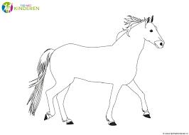 Paarden Kleurplaten Leuk Voor Kids Beste Tekening Van Een Paard20