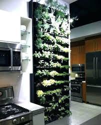 herb growing kit indoor innovative kitchen garden indoor ideas about kitchen herb indoor herb planters innovative