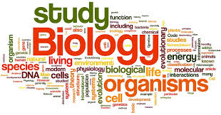 biology extended essay amazing world of science mr green picture