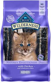 6 Blue Buffalo Wilderness Cat Food Review Top Picks Guide