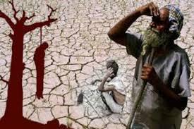 Farmers Suicide Conclusion