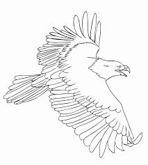 Pypus is now on the social networks, follow him and get latest free coloring pages and much more. Incredible Coloring Pages Eagle Printable Picolour