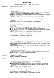 Audit Executive Resume Samples | Velvet Jobs